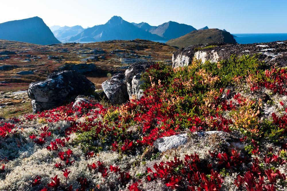Norwegen 10