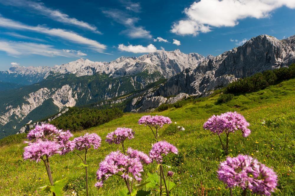 Oberbayern 21