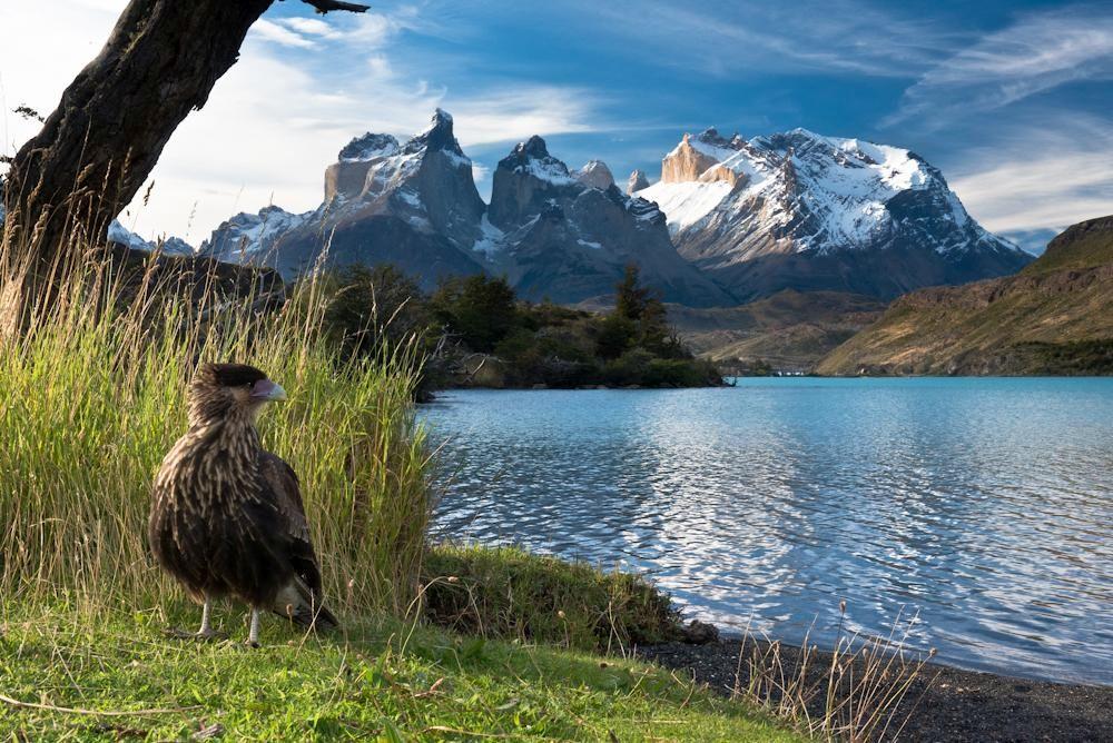 Südamerika 26